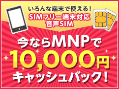 cp_simcashback150119 (1).png